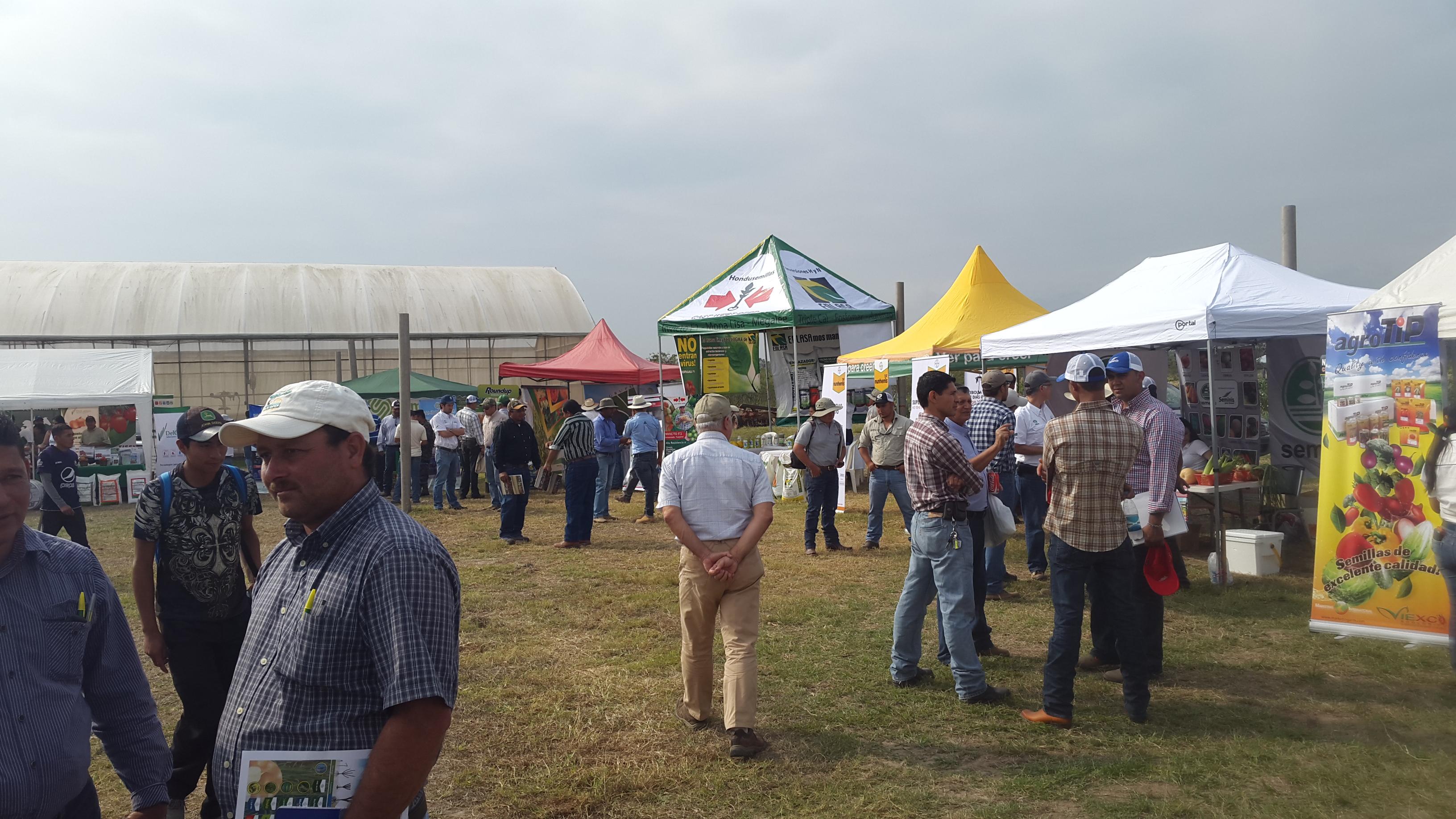 Feria Internacional Agrícola Comayagua 1